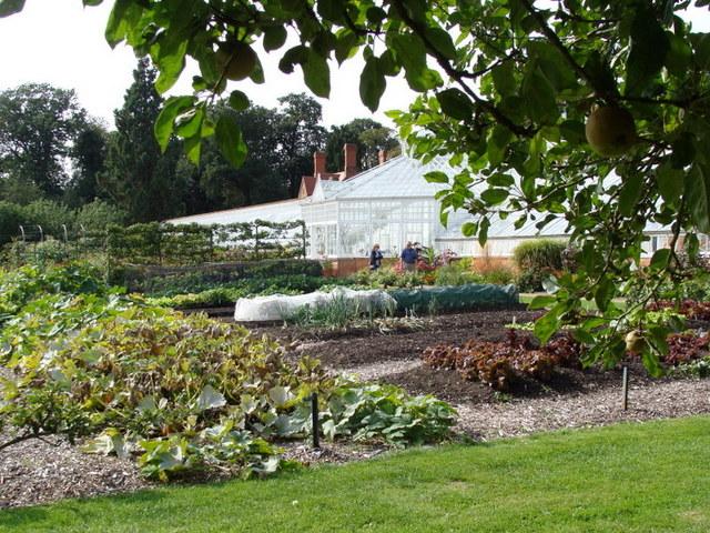 Sposób 'no-dig' czyli NIEKOPIEMY GLEBY ijesień wangielskim ogrodzie kuchennym Clumber Park
